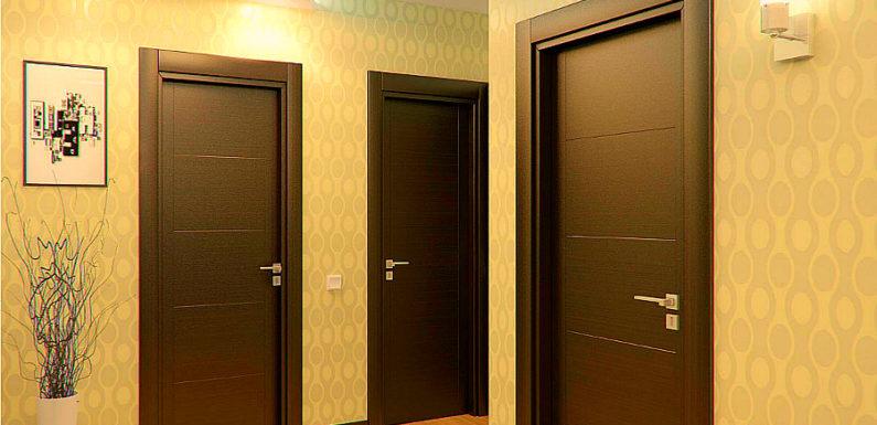 Виды и типы межкомнатных дверей